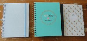 notitieboekjes hema 2